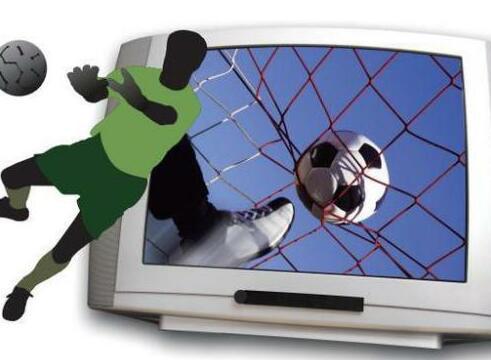 河南,互联网体育