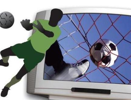 陆丰 互联网体育